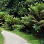 Jardin Du Conservatoire Botanique
