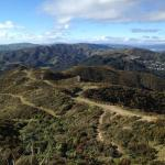 Makara Peak Mountain Bike Path