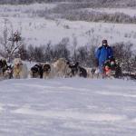 Tromso Villmarkssenter