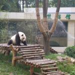 Wuxi Zoo