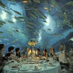 Tianjin Haichang Polar Ocean World