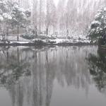 Ningbo Yue Lake