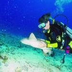 Hainan Diving