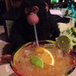 Monkey Business Bar