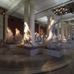 Musee De Picardie