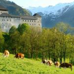 Castle Sightseeing Tour Of Burg Kaprun