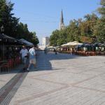 Dunavska Street And Zmaj Jovina Street