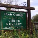 Poets Cottage Shrub Nursery
