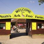 Noahs Ark Zoo Farm
