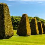 Pitmedden Garden And Museum Of Farming Life