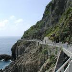 Cinque Terre Walk and Drink