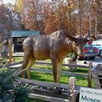 Moose Lake Christian Craft Village