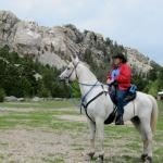 Hollingsworth Horses