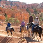 Panderosa Trail Rides