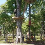 Tuscawilla Park