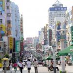 Taidong Pedestrian Street