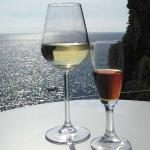 Save Vernazza Wine And Food Discovery