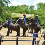 Samphran Elephant Park