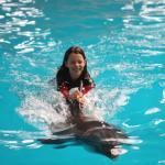 Istanbul Dolphinarium