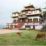 Zang Dhok Palri Monastery