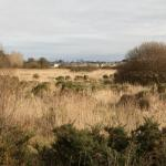 Waterford Nature Park