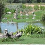 Wasit Wetland Centre
