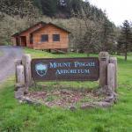 Mount Pisgah Arboretum
