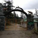 Shimla Water Catchment Sanctuary