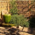 Yume Japanese Gardens Of Tucson