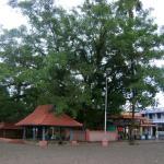 Kanichukulangara Devi Temple