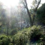 Ooty Hidden Valley Jungle Camp