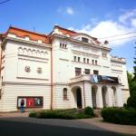 Russian Drama Theater Of Lithuania
