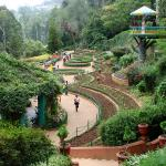 Government Botanical Gardens