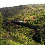 National Botanical Garden Of Georgia
