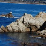 Point Lobos State Reserve And China Cove Gibson Beach
