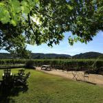 Obrien Estate Winery
