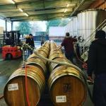 Robert Biale Vineyards