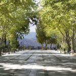 Alameda Del Tajo