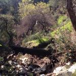 Wilderness Glen Park