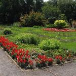 Ogrod Botaniczny Uniwersytetu Jagiellonskiego