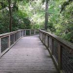 Bluebonnet Swamp Nature Center