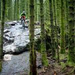 Davagh Forest Trails - Mtb Trailhead
