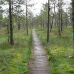 Dzukijos Nacionalinio Parko Direkcija
