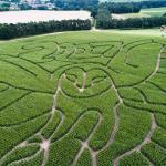 Hundred River Maize Maze
