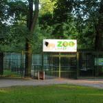 Akcent Zoo