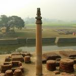 Ashok Pillar