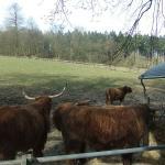 Tierpark Bielefeld