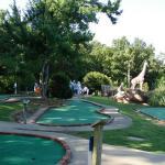 Gator Golf Fayetteville