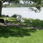 Bixler Lake Park And Campground