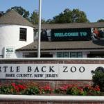 Turtle Back Zoo
